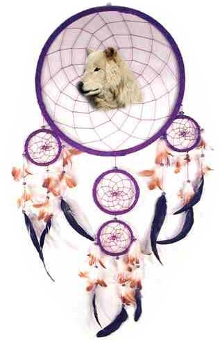 wolfcatcher.jpg